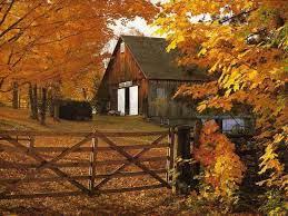 Free Autumn Wallpapers For Desktop ...