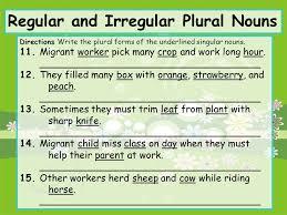 plural form of knife regular and irregular plural nouns ppt video online download