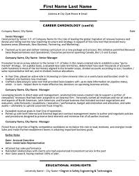 Sales Account Executive Resume Sample & Template