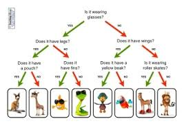 Animal Activity Chart Sorting Animals Resources Teaching Ideas