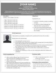 How To Type A Resume Magnificent Quantitative Surveyor Resumes For MS Word Resume Templates