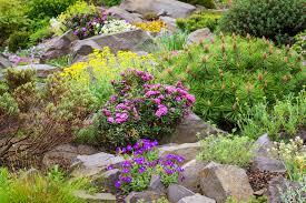 how to build a rockery the english garden