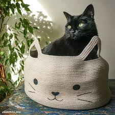 diy cat bed time for a cat nap