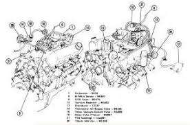 similiar chevy v6 engine diagram keywords 1984 chevy s10 engine diagram in addition chevy v6 engine diagram
