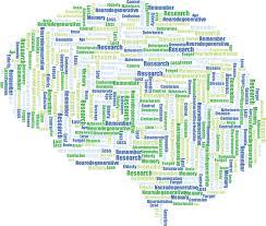 Image result for memory brain