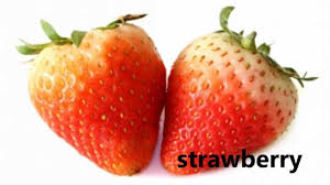 pictures of different fruit. Wonderful Different For Pictures Of Different Fruit O