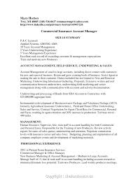 Insurance Account Manager Resume Account Manager Resume Examples