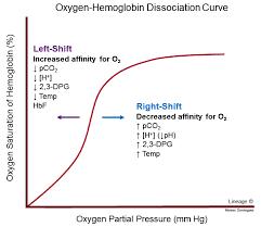 Oxygen Hemoglobin Dissociation Curve Respiratory