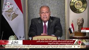 التاسعة | كلمة وزير الخارجية سامح شكري أمام جلسة مجلس الأمن عبر  الفيديوكونفرانس بشأن سد النهضة - YouTube