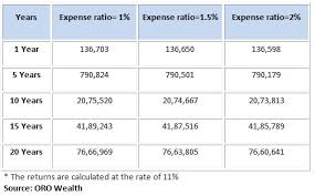 Should Mutual Fund Investors Worry About Expense Ratios Or