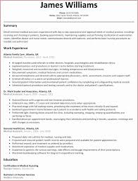 Free Resume Templates 2015 Best Free Resume Templates 2015 Best Of Best Resume Format