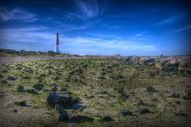 Barnegat Inlet Tide Chart 2016 Barnegat Light New Jersey Wikiwand
