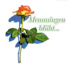Bildergebnis für memmingen blüht logo