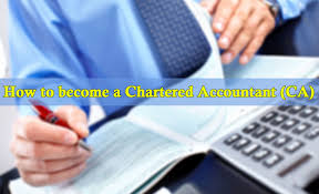 Charted Accountant Are You Interested In Chartered Accountant Ca Mahizh