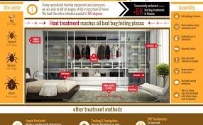 bed bug heat treatment dallas infographic