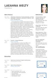 Veterinary Assistant Resume Samples Visualcv Resume Samples Database