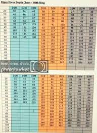 Tadpole Weight Dive Chart Tadpole Weight Dive Chart Snap Weights Dive Chart