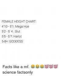 Female Height Chart 410 51 Mega Hoe 5 2 51 4 Slut 55 57