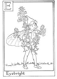 Small Picture Letter E For Eyebright Flower Fairy Coloring Page Alphabet