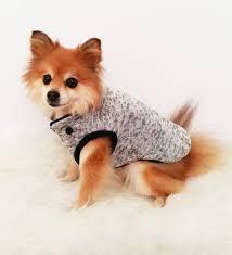 gray navy dog coats xs 4xl puppy clothes dog hoo small