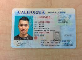 Template California - Fake License Id Invoice Akpsimsu Templates Word Flower Free Drivers com
