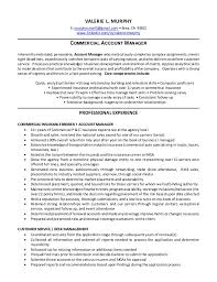 account manager objectives resume example templates accounts finance format  insurance sample .