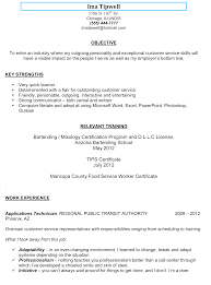 Resume Example Bartender Resume