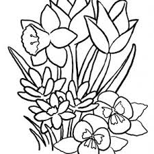Small Picture Flowers Coloring Pages Christmas Flower adult