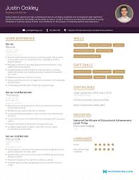 How to write a cv (curriculum vitae writing guide). Server Resume 2021 Example Full Guide