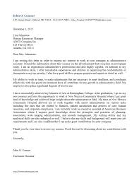 cover letter example executive or ceo creating a picture  cover letter example executive or ceo creating a cover letter
