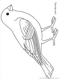 Small Picture Bird Outline Printable Coloring Home