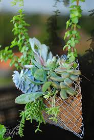25 diy wall planters teach you how to