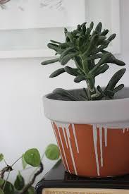 diy paint drip plant pot growing spaces