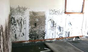 how to remove smoke from walls how to remove smoke from walls remove smoke odor from