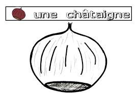 Coloriage De Chataigne L
