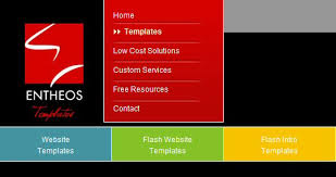 Flash Website Templates Cool Rachna Kingston Interview Making Money Online Selling Website