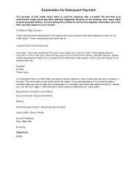 Payment History Letter Template Sample Letter Explanation For Delinquent Payment