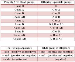 Blood Type Offspring Chart Blood Group Chart Parents Bedowntowndaytona Com