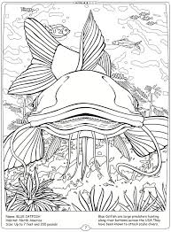 Welcome To Dover Publications Coloring Pages Animals Pinterest