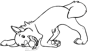 Small Picture Husky Coloring Pages Free Printable Coloring Pages for Kids