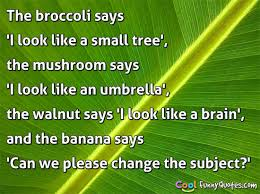 Tree Quotes Mesmerizing Tree Quotes Cool Funny Quotes