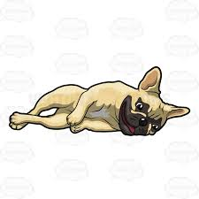 cute french bulldog clipart. Exellent French Cute Little French Bulldog Lying Down On Its Side Clipart W