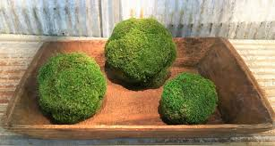Decorating With Moss Balls Awesome Moss Balls And Topiaries Size Does Matter The Navage Patch 76