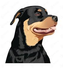 Small Picture 27 best auto zonwering images on Pinterest Rottweilers Sticker