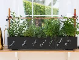 Garden Design Companies Cool Top Garden Trends For 48 Garden Design