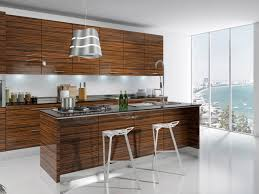 Small Picture Modern Kitchen Cabinet Lovely Design Best Modern Kitchen Cabinets