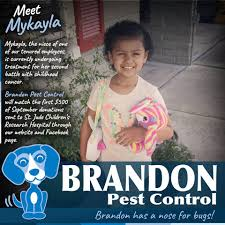 brandon pest control jacksonville fl.  Jacksonville Image May Contain 1 Person Smiling Text On Brandon Pest Control Jacksonville Fl C
