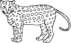 Cheetah Color Sheet Cheetah Coloring Pages