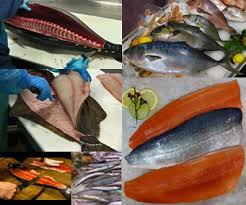 Seafood Yield Chart Fish Fillet Butchering Yields Chefs Resources