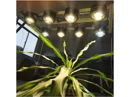 Grow Light Duo Shine Grow 400w Vero29 Cob Kits Gen 7